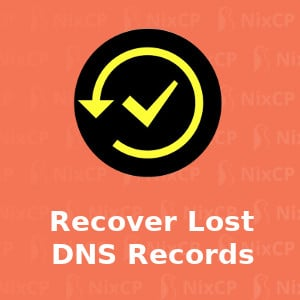 how to recover lost dns records